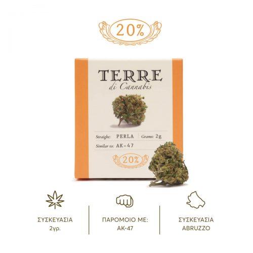 terredicannabis-perla-4